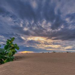 Cumbuco Sunrise