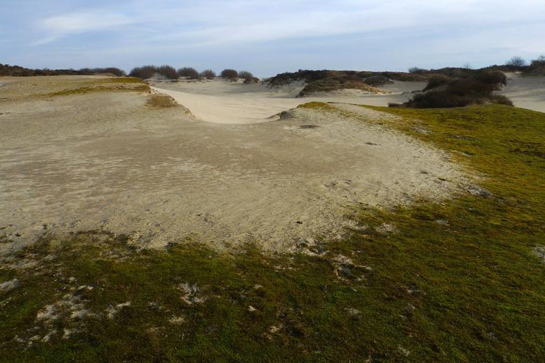 Meeuwenduinen - De meeuwenduinen, schitterend natuurgebied bij Burgh-Haamstede. NB Alleen toegankelijk van 1 oktober tot 1 maart.