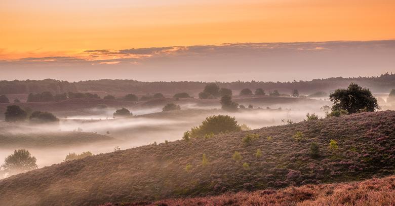 Sunrise op de Posbank - Foto's van de Posbank komen vaak voorbij. Het is ook zo'n geweldig mooi gebied. Gisterochtend samen met Lia er nog maar weer e