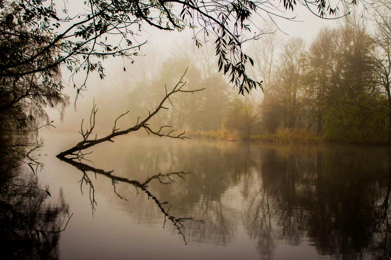 Mistige ochtend in kleur - Hierbij de kleurenversie van de eerder geuploaden zwartwit versie. Blijft moeilijk om een keuze te maken