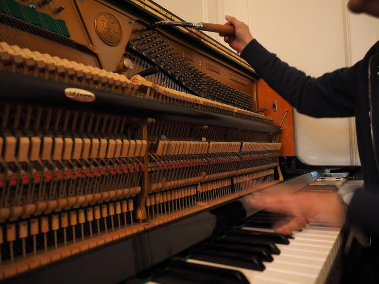 """STEM,mer - Hij klinkt weer als muziek...<br /> <a href=""""http://pietagterhoffotografie.nl/"""">Piet Agterhof Fotografie</a>"""