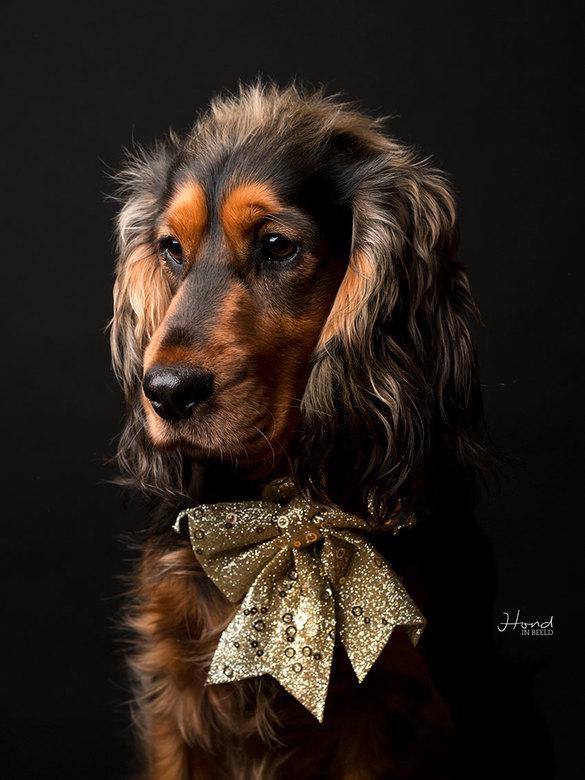Waiting for Christmas -