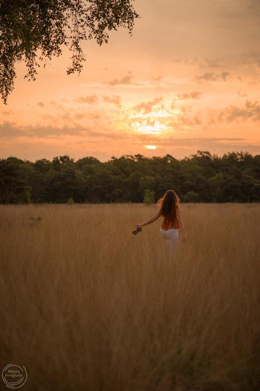 Gouden moment van blijheid en vrijheid  - Gouden moment van blijheid en vrijheid