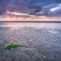 Natuurfotografie in Nederland