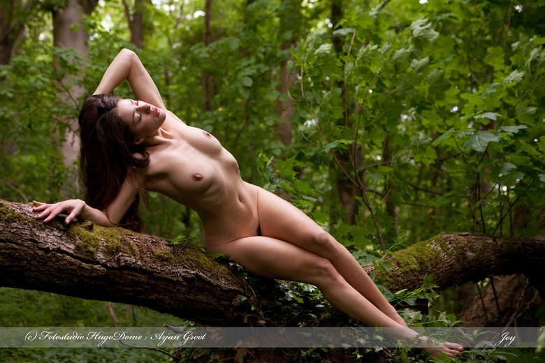 Art nude in the wood - In the wood with Joy