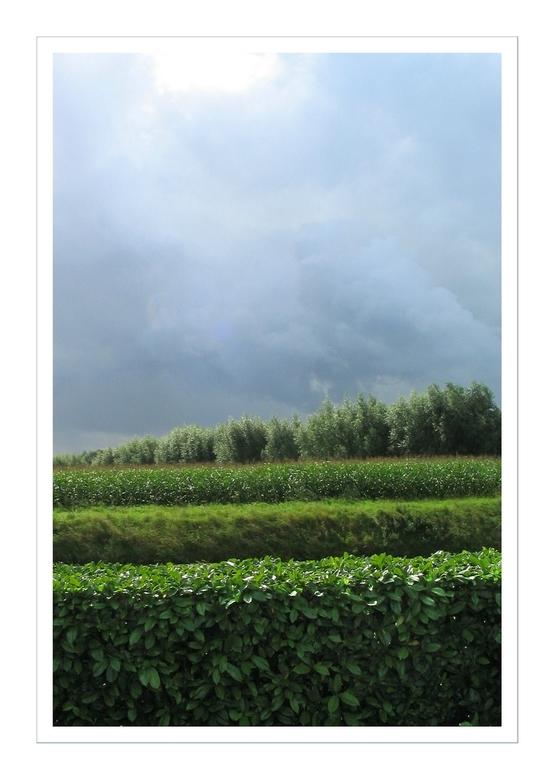 """Gestapeld landschap - Een zomerfoto, als contrast met mijn vorige upload <img  src=""""/images/smileys/smile.png""""/> Genomen vanuit de tuinen van Appelter"""