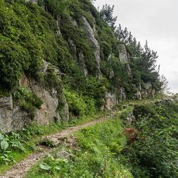 Typisch Pyreneeën