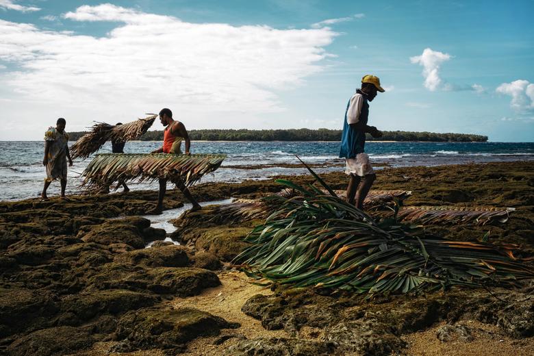 Dakbedekking - Deze mensen zijn bezig met het verschepen van geweven palmbladeren van het eiland Malakula in Vanuatu naar het kleine eiland in de acht