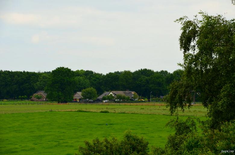 Wezep Landschap - Deze foto genomen op de viaduct bovenheigraaf van de A28 bij Wezep !