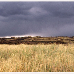 duinen van domburg