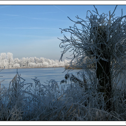 Winterlandschap in 't Weegje (4)