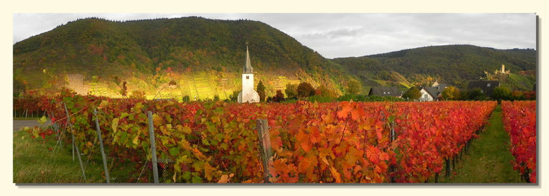 Herbst am Mosel