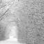 Winter in Stakroge