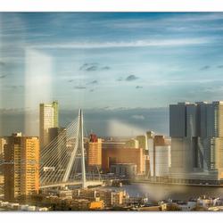Erasmus_Rotterdam_Faculteit
