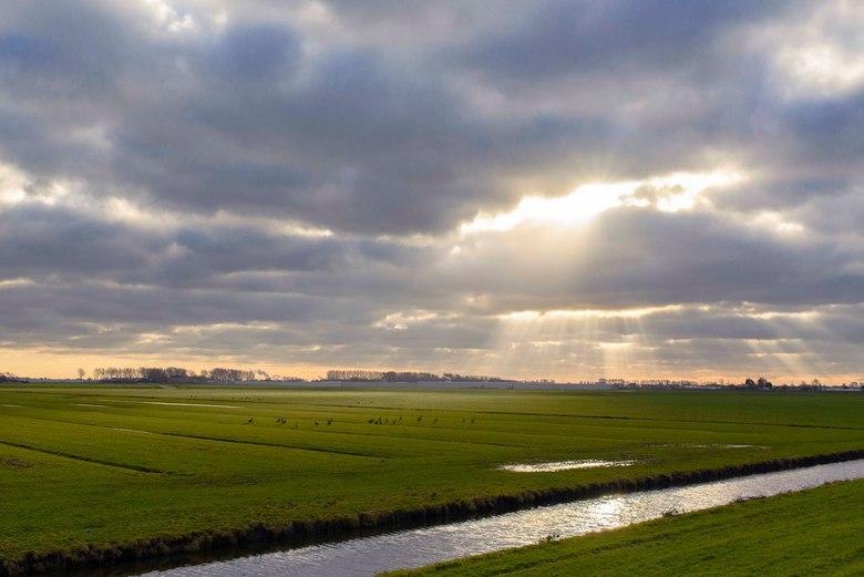 20141231_LJD_DSC1070_zoom.jpg - Woudsepolder Midden Delfland
