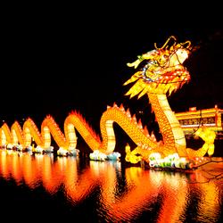 China light in Rotterdam