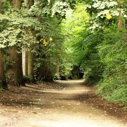 Zuid-Limburgse Natuur
