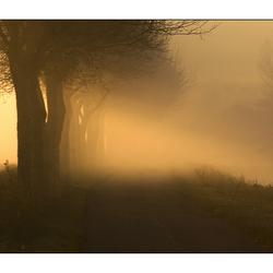 mist en licht