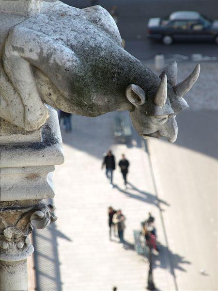 Notre Dame - Parijs 2009 - 10 - Vanaf deze hoogte kan ik alles mooi in de gaten houden...