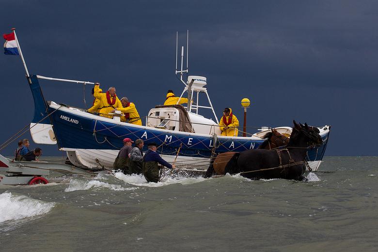 Ameland-Reddingboot - Paarden trekken de kar