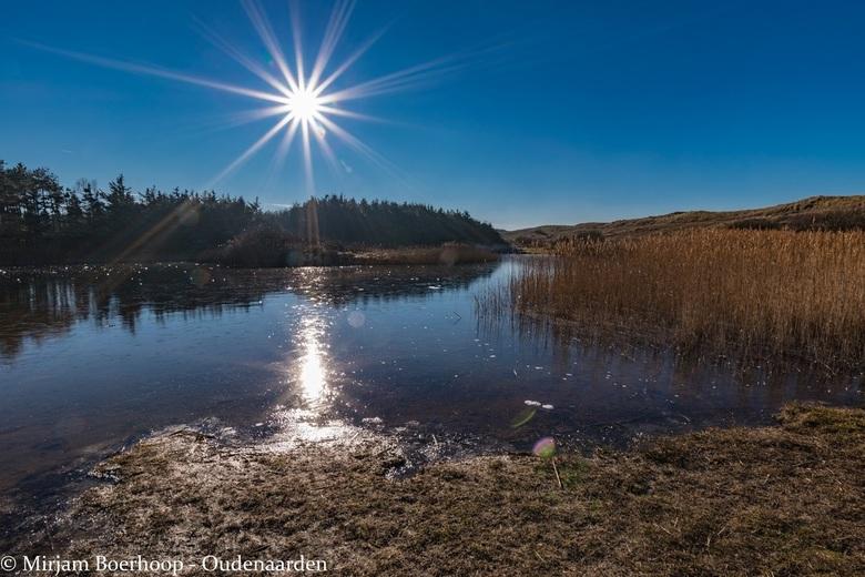 A sunny winterday