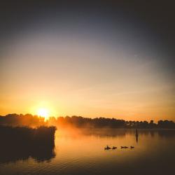 Rustige ochtend