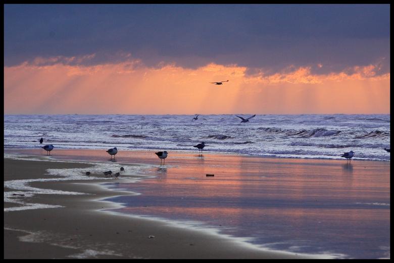 Terschelling 2009.jpg - Terschelling najaar 2009, een half uurtje voor zonsondergang.