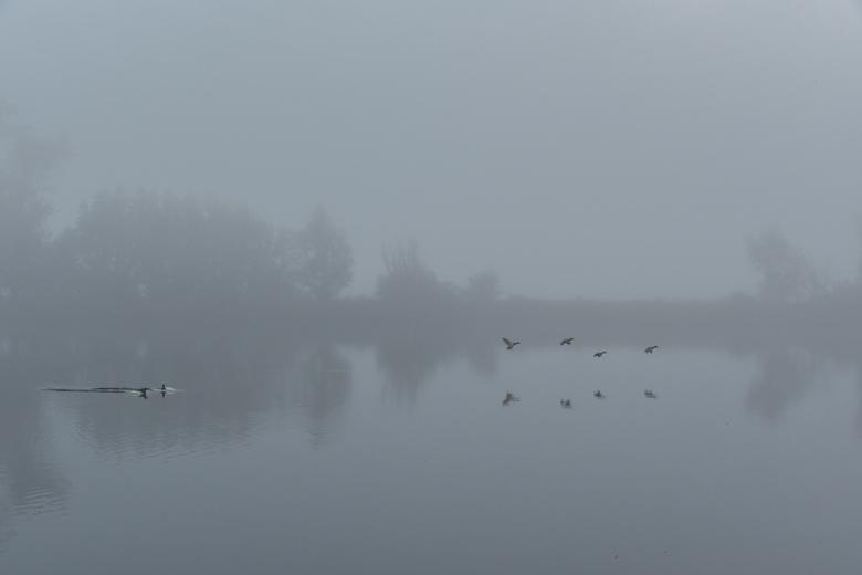 DSC_4187 - mist