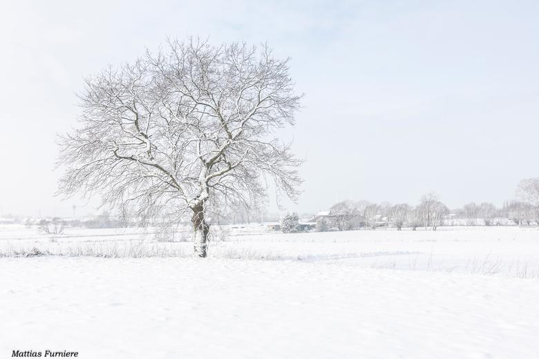 Winter Wonderland - Gisteren kon ik genieten van dit prachtige landschap!<br /> <br /> Nikon D7500 - Tokina 12-24mm PRO F4