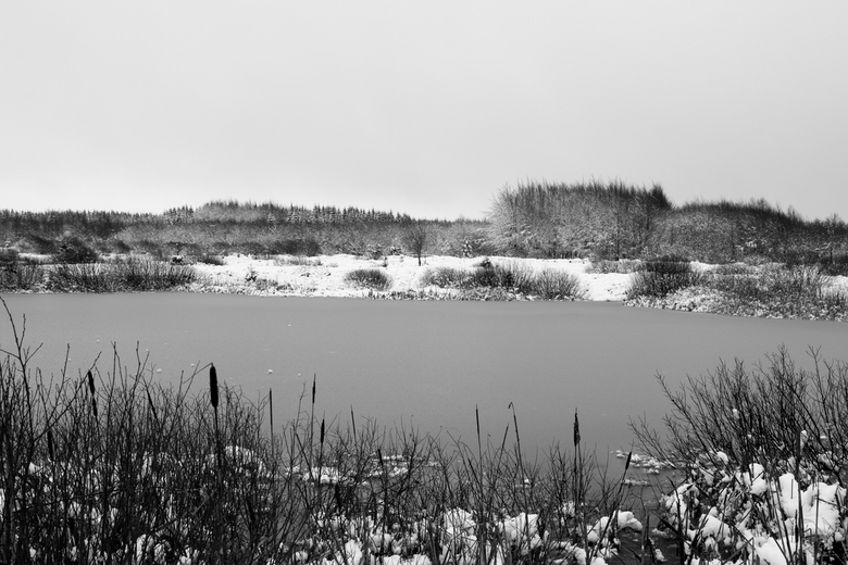 Ardenne Belgie - Eerste sneeuw.