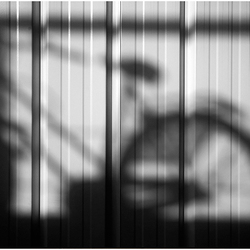 Suntanning Bike(s) II