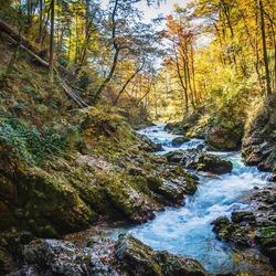 Herfst rivier