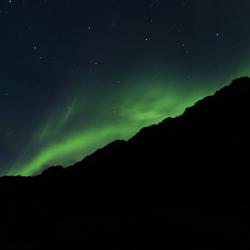 Noorderlicht in Henningsvær (Lofoten)