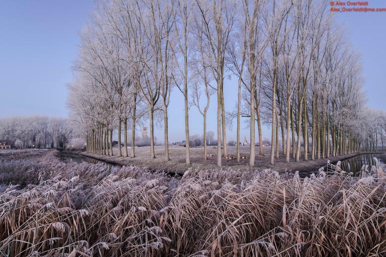 Winter landscape around Damme -4912