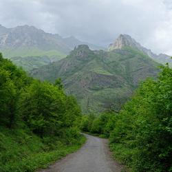 Armenian forest