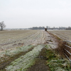 Akkerland in winterslaap