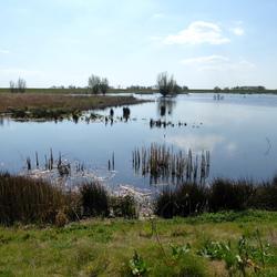 Water Landschap