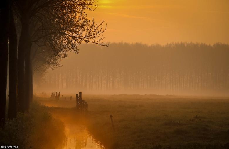 Mist boven de sloot - mist boven de sloot en de weilanden vanmorgen bij Ommeren