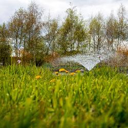 2016-04-30 Botanische Tuinen Utrecht