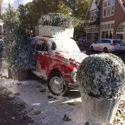 kever in de sneeuw