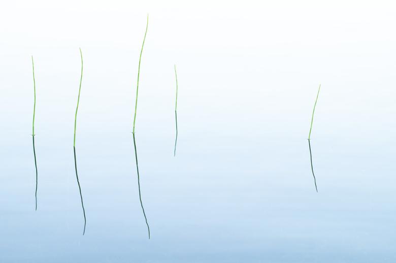 Weerspiegeling - Het kalme water op het meer en de bewolking, zorgde voor een mooie weerspiegeling op het water.