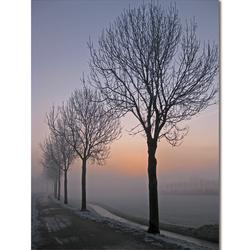 Stadspolders Dordrecht