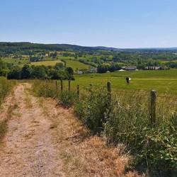 Dutch Hills