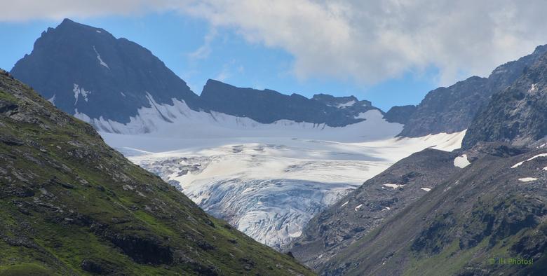 IJstong - Gletschertong boven het Silvretta stuwmeer