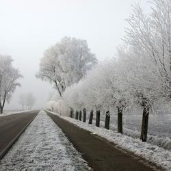Bevroren Sint Philipsland