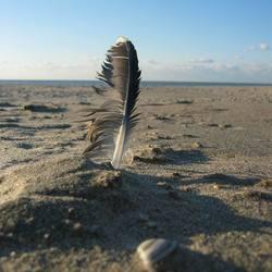 Duindorp, strand.