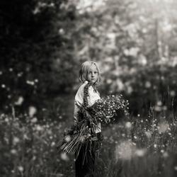 Bloemen plukker