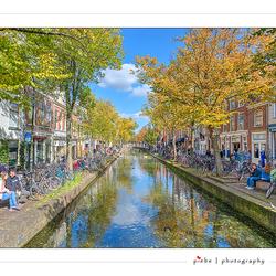 Nazomeren in Delft