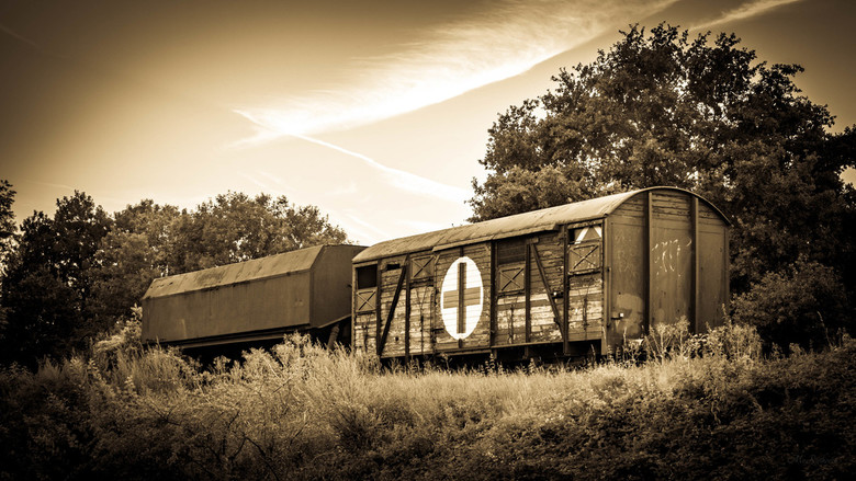 Memories of the past - Wagons in Sinpelveld