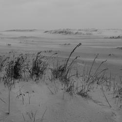 Wind, zand & duinen
